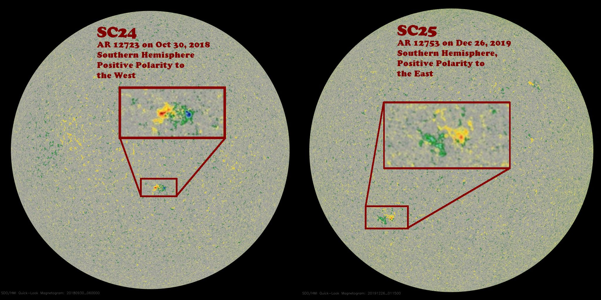 ARs from SC24 and SC25 compared to show the reversed polarity